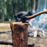 Jede gefällte Eiche ist eine gefällte Eiche zu viel – die AfD in Hochform